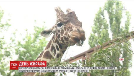 В столичном зоопарке отметили Всемирный день жирафа