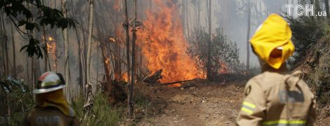 Масштабные лесные пожары в Испании: из кемпингов на юге страны эвакуировали более 1000 человек