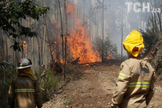 Масштабні лісові пожежі в Іспанії: з кемпінгів і хатинок на півдні країни евакуювали понад 1000 людей