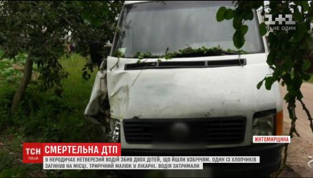 Внаслідок ДТП на Житомирщині загинув 7-річний хлопчик