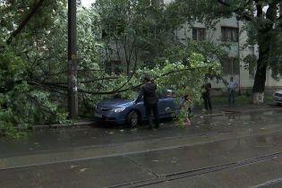 Повалені дерева та підтоплені вулиці. Києвом пронеслася потужна злива