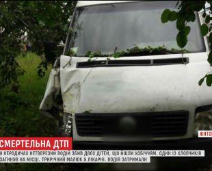 П'яний кермувальник на смерть збив маленького хлопчика на Житомирщині