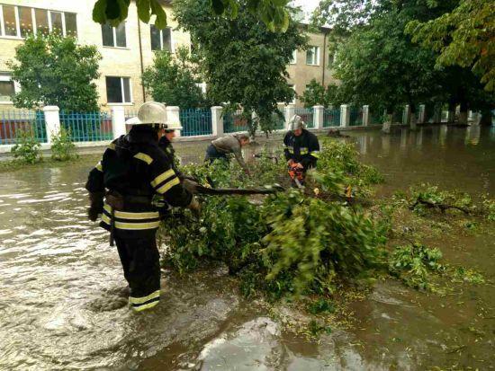 Наслідки негоди: повалене дерево вбило дівчину, 86 населених пунктів знеструмлено