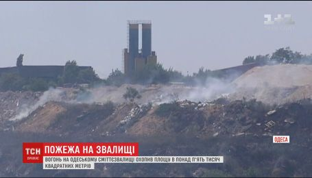 В Одессе загорелась свалка