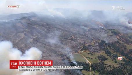 В американских штатах Юта и Аризона бушуют пожары