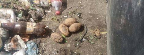 Взрывной мусор: в львовском хламе нашли пять гранат