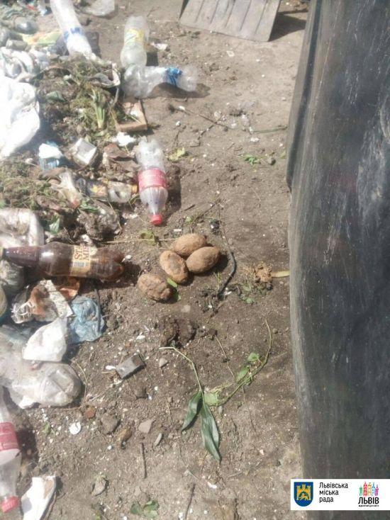 Вибухове сміття: у львівському непотребі знайшли п'ять гранат