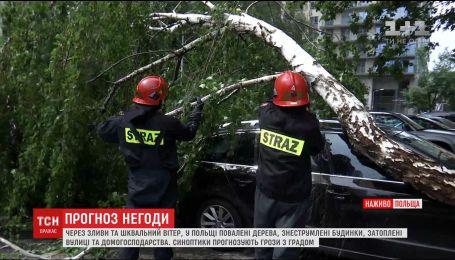 Через зливи та шквальний вітер у Польщі повалені дерева і знеструмлені будинки