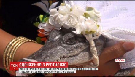 Мер мексиканського містечка Сан Педро взяв за дружину рептилію