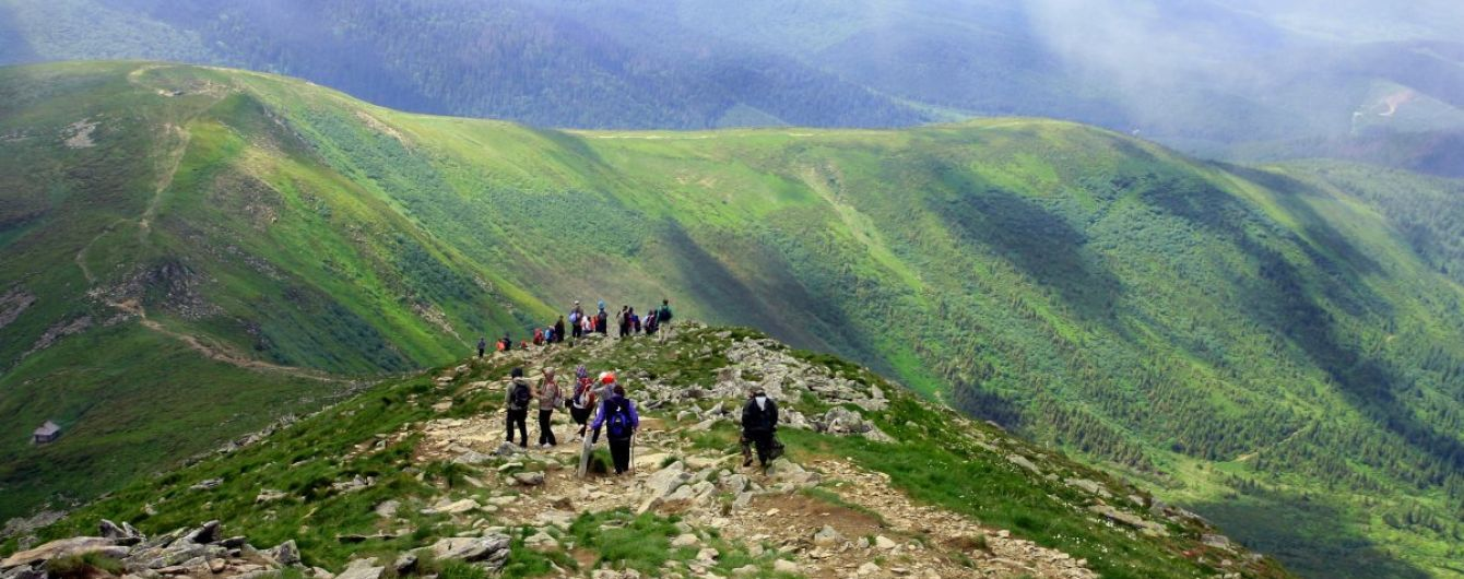 Карпатские леса могут внести в список Всемирного наследия ЮНЕСКО