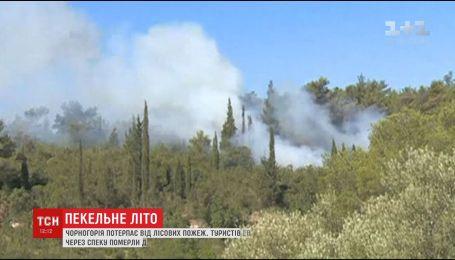 Чорногорія та Кіпр опинилися в небезпеці через жахливу спеку