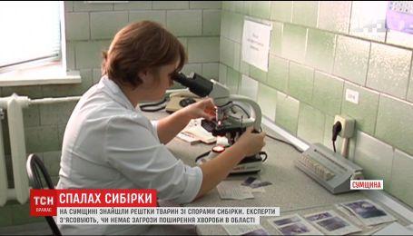 На Сумщине обнаружили останки животных со спорами сибирской язвы