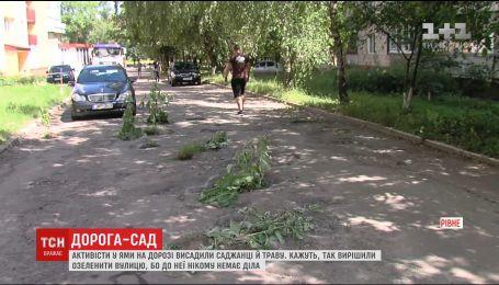 У Рівному активісти в ями на дорогах висадили саджанці й траву