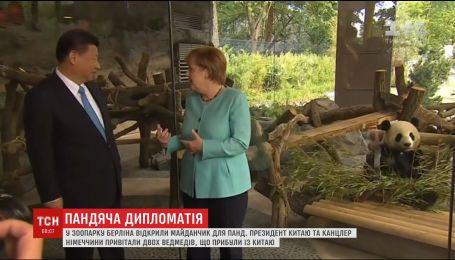 Президент Китая и канцлер Германии поздравили медведей, прибывших в Берлин