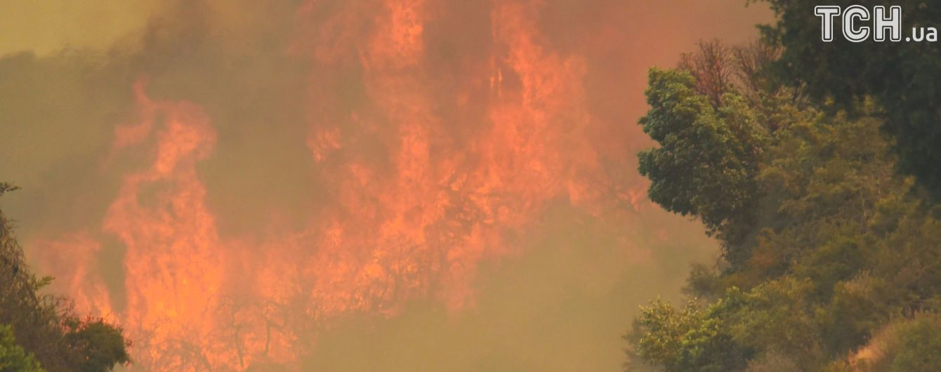 Тисячі евакуйованих і перші постраждалі: Каліфорнією поширюються лісові пожежі