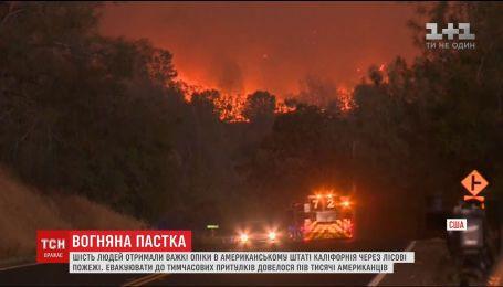 Калифорния страдает от масштабных пожаров, есть пострадавшие