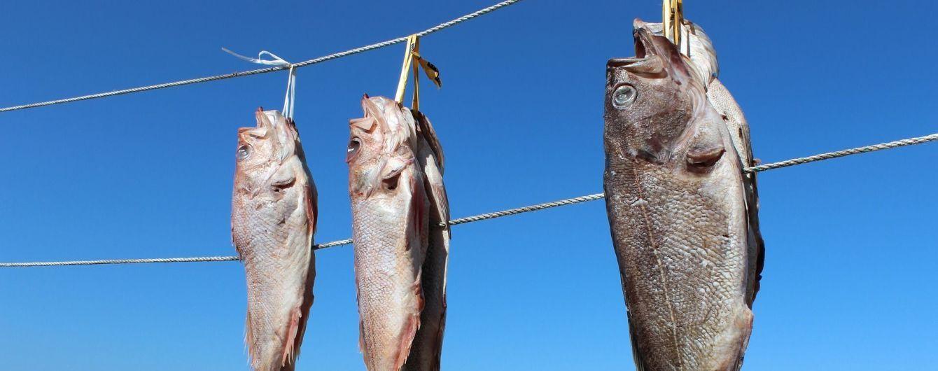 На Кіровоградщині жінка смертельно отруїлась в'яленою рибою