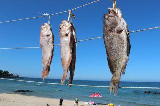 На Кировоградщине женщина смертельно отравилась вяленой рыбой