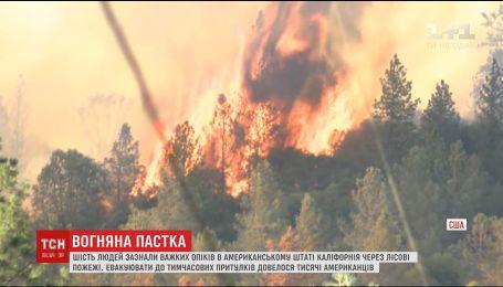 По меньшей мере шесть человек получили тяжелые ожоги из-за лесных пожаров в Калифорнии
