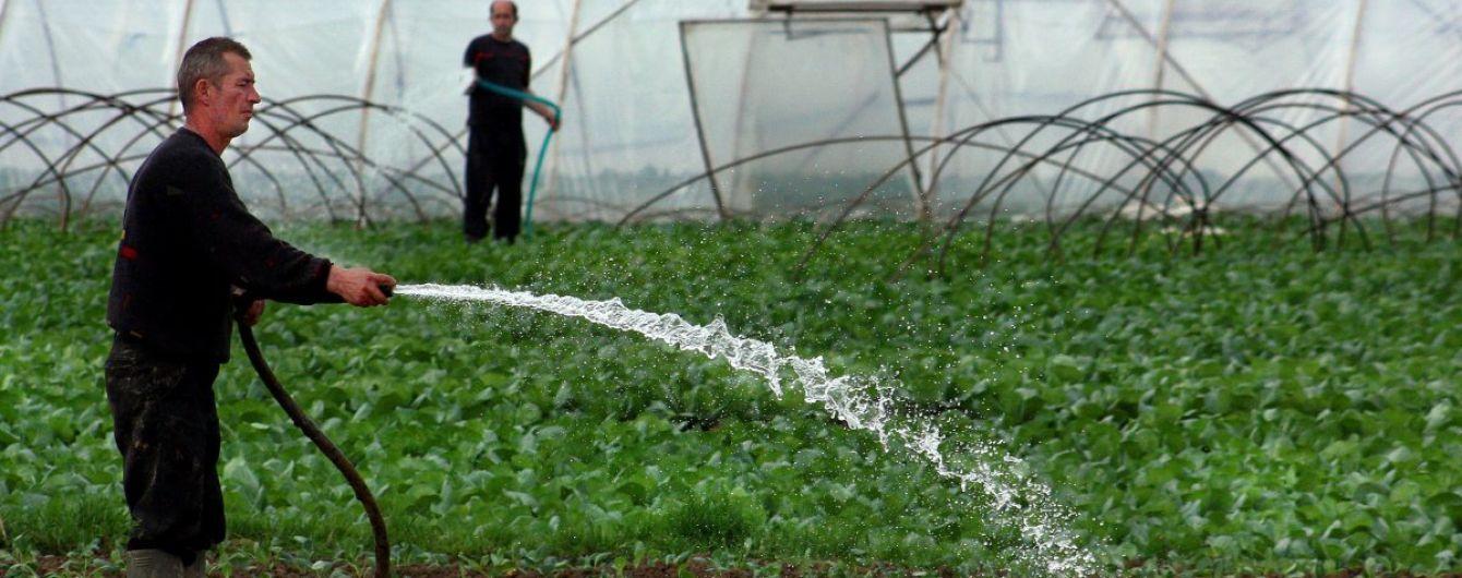 Канада розпочинає інвестувати в українське плодоовочівництво