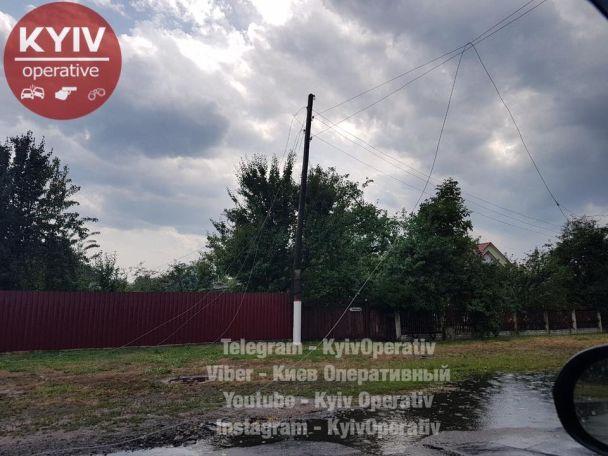 Непогода на Киевщине: в Барышевке выкорчевало деревья, пообрывало провода и поваляло бигборды