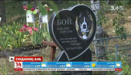 В Киеве появится самое большое кладбище для домашних животных
