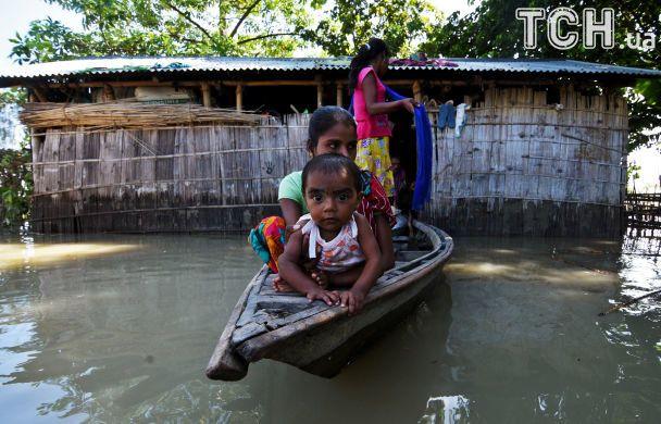 Мощные наводнения в Индии убили более 80 человек и трех редких носорогов