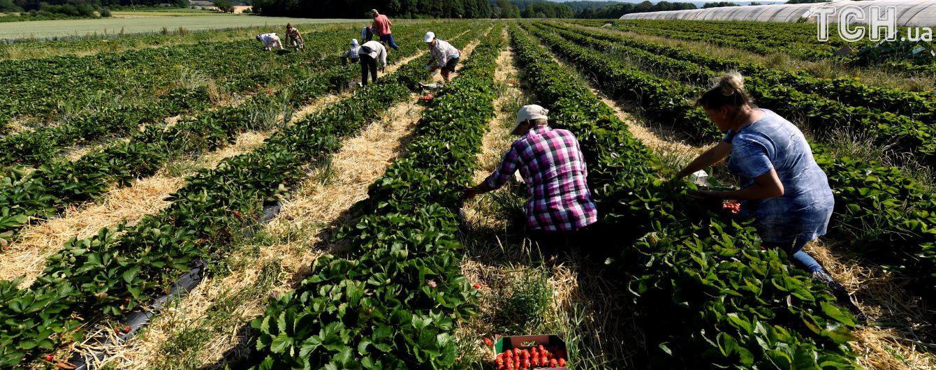Польша меняет правила трудоустройства иностранных работников
