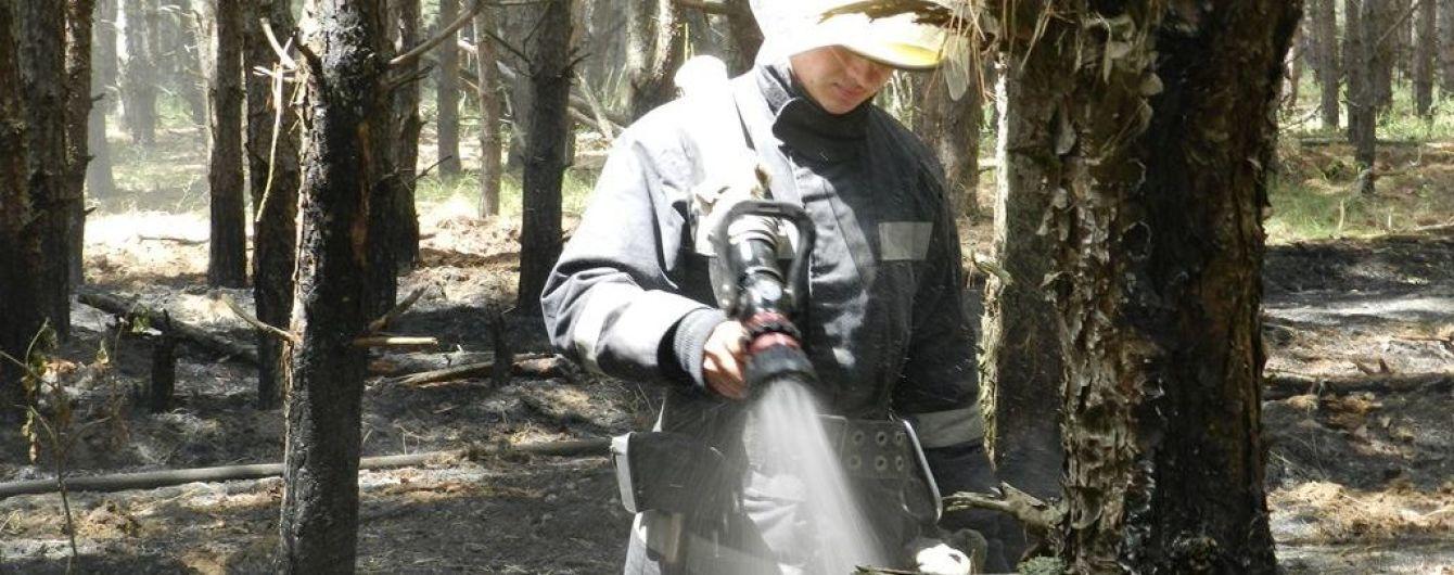 На Херсонщині майже чотири години гасили масштабну пожежу у великому лісі