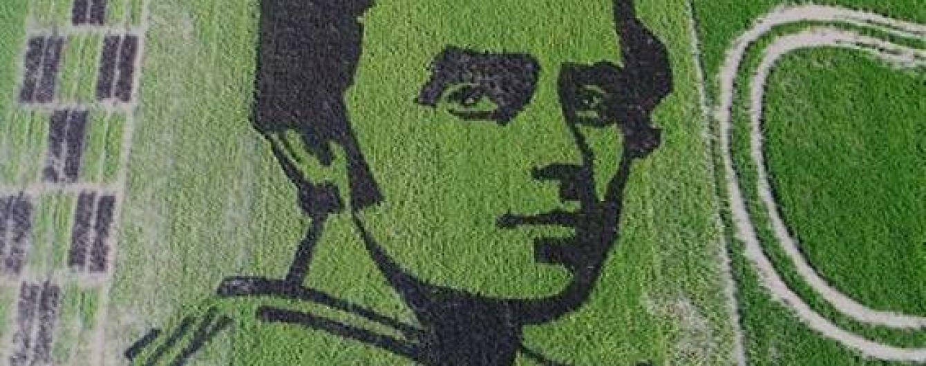 На полях Херсонщины появился огромный портрет Шевченко