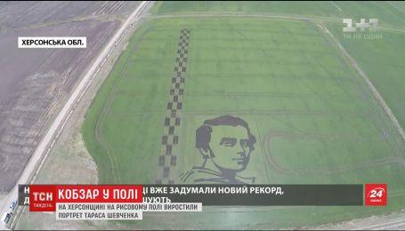 На Херсонщині виростили величезний портрет Шевченка, який видно з космосу