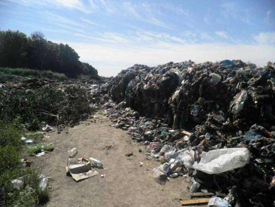 Во Львове обвинили частную компанию в сбросе мусора на Киевщине