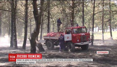 Лесные пожары досаждают Херсонщине