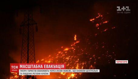 У Чорногорії евакуюють туристів через лісові пожежі