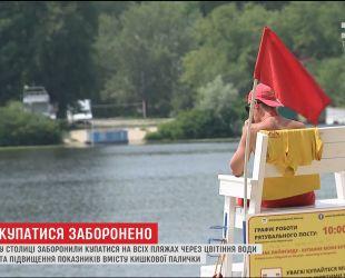 На пляжах Киева запретили купаться из-за цветения воды и повышения содержания кишечной палочки