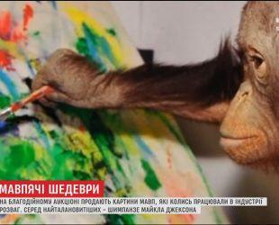 На благотворительном аукционе продают картины, написанные обезьяной Майкла Джексона