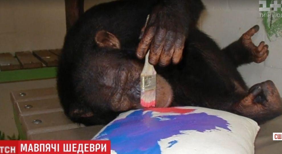 Шимпанзе Майкла Джексона намалювала картину, яка продалася на аукціоні