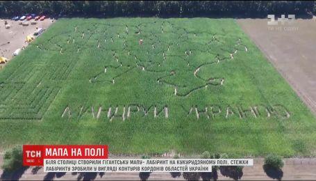 Новый рекорд Украины: возле Киева создали самую большую карту-лабиринт на кукурузном поле