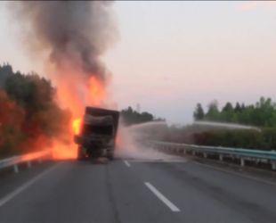 В Китае дотла выгорел грузовик с сотней свиней