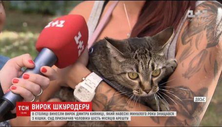Суд оголосив вирок чоловікові, який весною минулого року знущався над котом