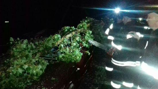 На Закарпатті через потужну негоду 30 населених пунктів залишилися без електрики