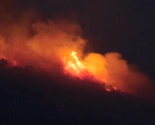 На юге Франции загорелись лесные массивы