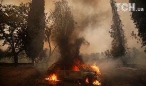 Пекельний вогонь: Португалію охопили потужні лісові пожежі