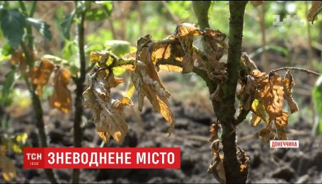Прифронтовой Торецк страдает от недостатка воды через контроль боевиками фильтровальной станции