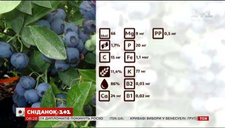 Поради дієтолога. Чорниця - найкорисніша ягода літа