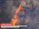 Лісові пожежі у Греції наблизилися до столиці і вже загрожують будинкам