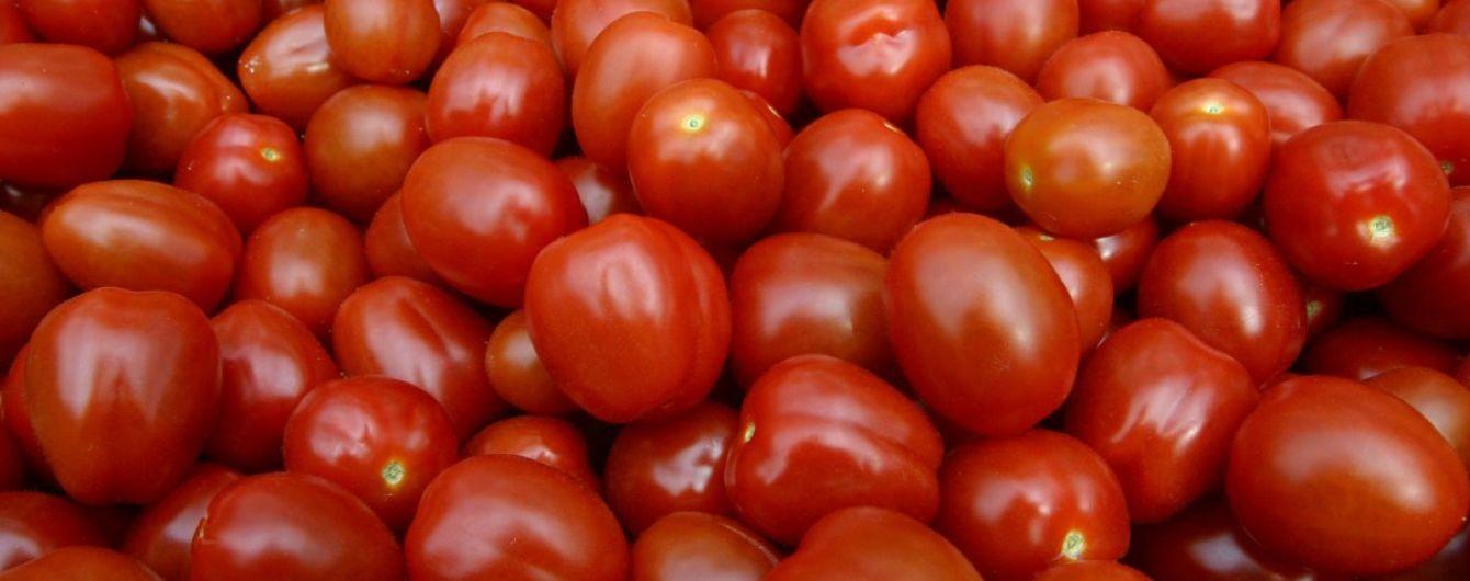 В Украине существенно упали цены на помидоры