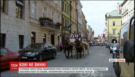 Аби захистити коней від спеки, у польському Кракові заборонили кінні екіпажі