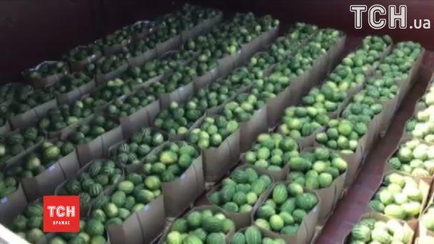 Добрались благополучно: херсонские арбузы показали после путешествия на барже