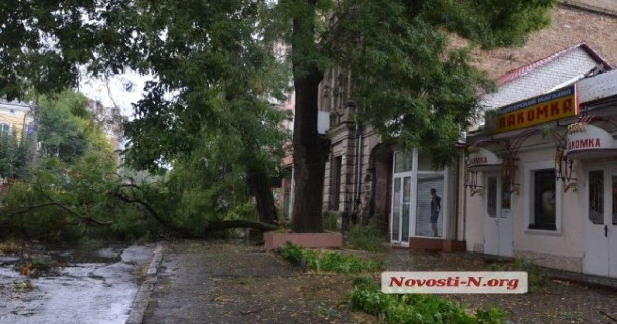 @ Novosti-N